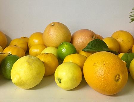 Een goed gesprek over sinaasappels